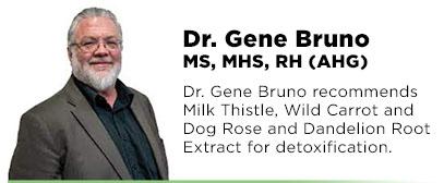 Gene Bruno Recommends